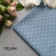 Джинсовая ткань  для рукоделия TKG004. Отрез 20*50см